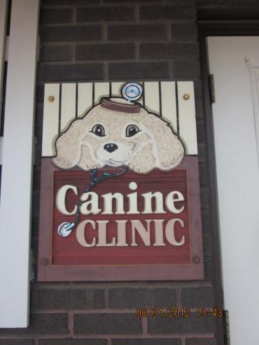 our canine entrance