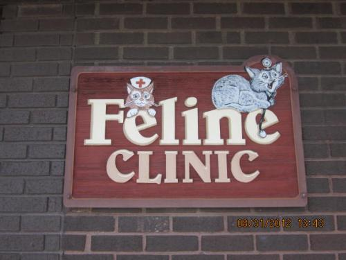 We Offer a Separate Entrance for our Feline Patients... To Avoid the Stress of Waiting with a Room of Dogs!