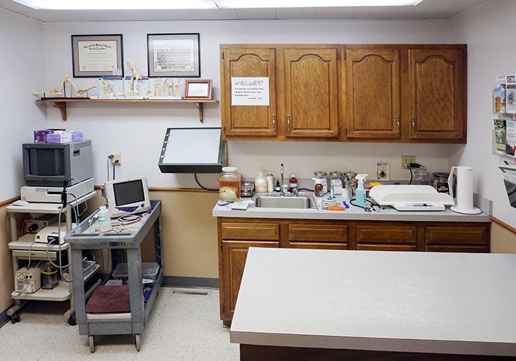 a canine examination room