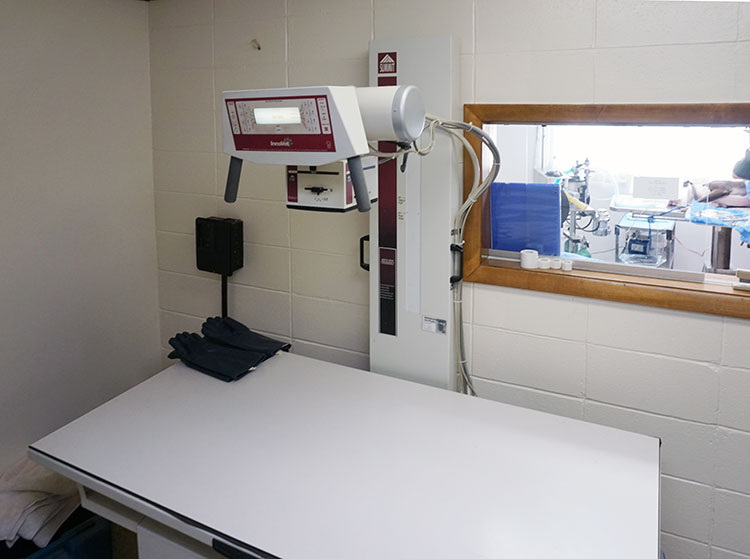 x-ray room and table