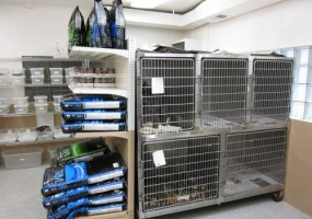 boarding your pet at wooster animal clinic